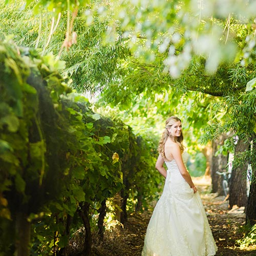 bride vineyard at Amy's Courtyard in Palisade Colorado